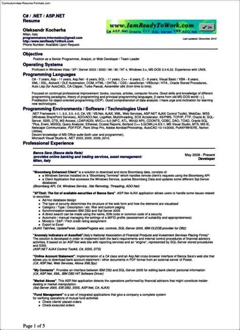 programmer resume template free sles exles
