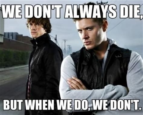 Funny Supernatural Memes - funny picture winchesters supernatural