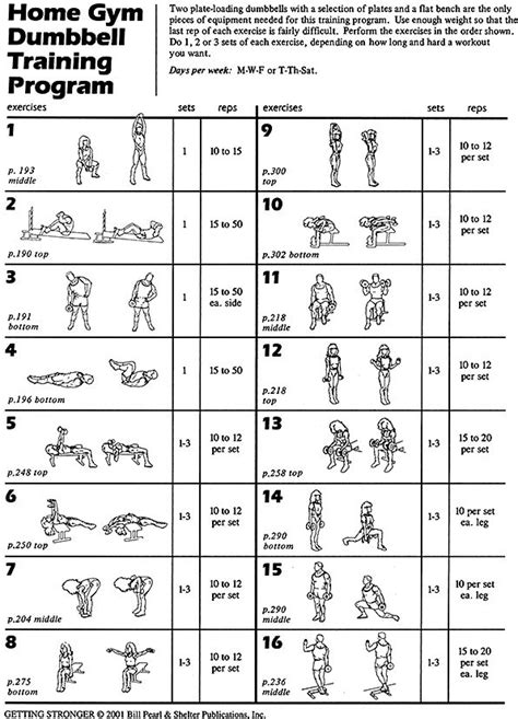 25 best ideas about dumbbell workout program on pinterest
