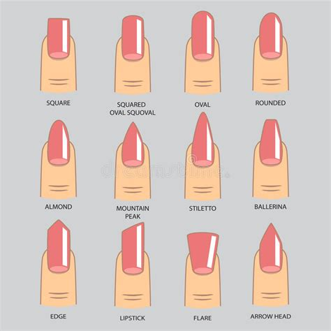 8 Nail Shapes And How To Choose The One For You by Set Of Different Shapes Of Nails On Gray Nail Shape Icons