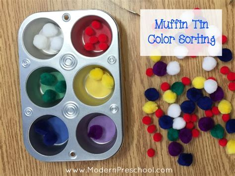 sort colors activity muffin tin color sorting