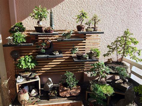 giardini bonsai como fazer um jardim bonsai coisas da terra