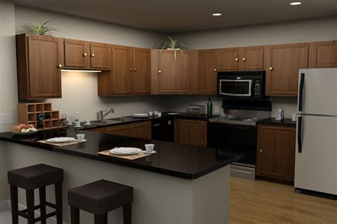 kitchen theme ideas for apartments kitchen that will