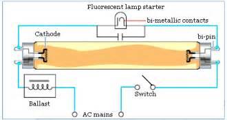 how does a fluorescent light work light bulbs