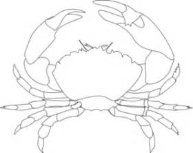 Whte Crab Clip Art At Clkercom  Vector Online Royalty Free sketch template