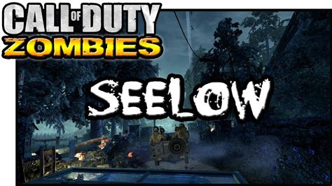 youalwayswin zombies seelow call of duty zombies