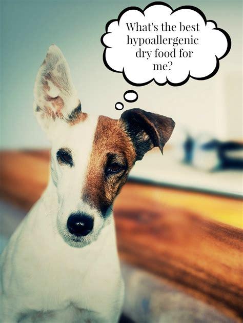 best hypoallergenic food the best hypoallergenic food vills