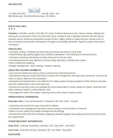 executive summary of your resume sle executive summary resume 8 exles in word pdf