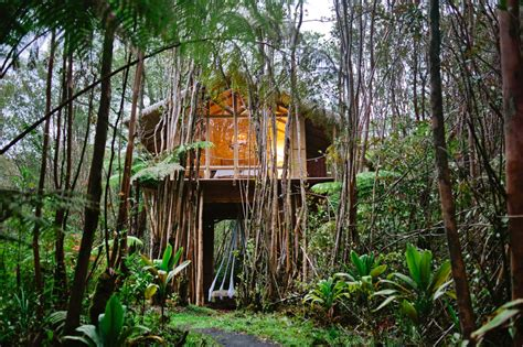 real life treehouse house crush an off the grid hawaiian treehouse for a