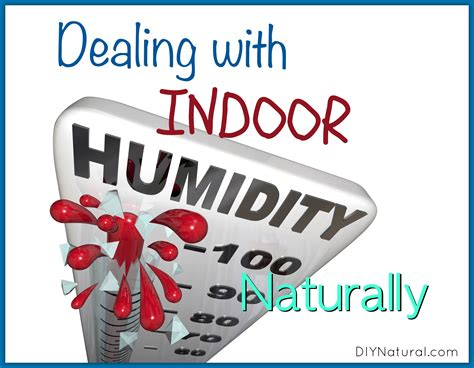 humidity inside house dealing with indoor humidity in house naturally