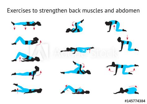 exercises to strengthen back muscles and abdomen buy this stock vector and explore similar