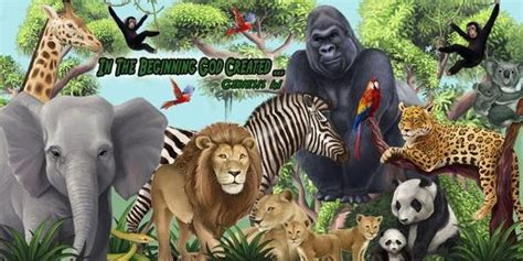 animal murals wild zoo animal wall murals  kids room decor