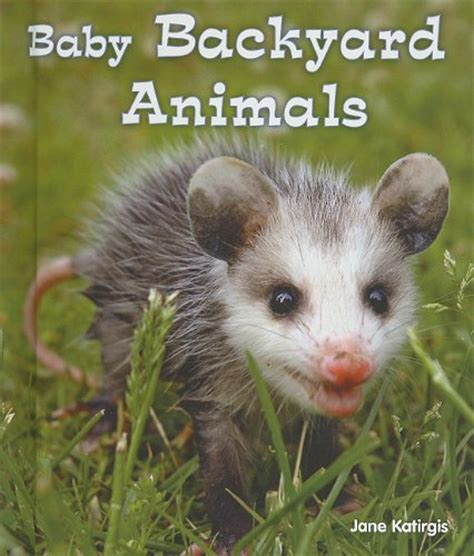 backyard animals baby backyard animals lexile 174 find a book metametrics inc