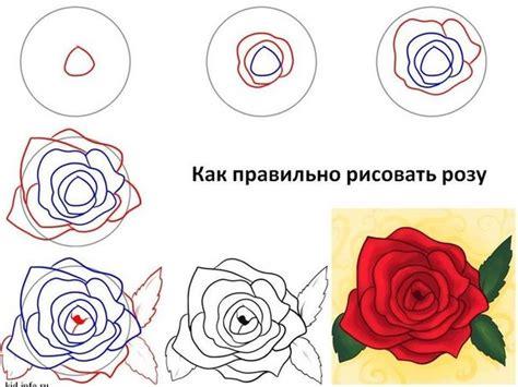 imagenes de flores rojas para dibujar como dibujar rosas paso a paso imagui