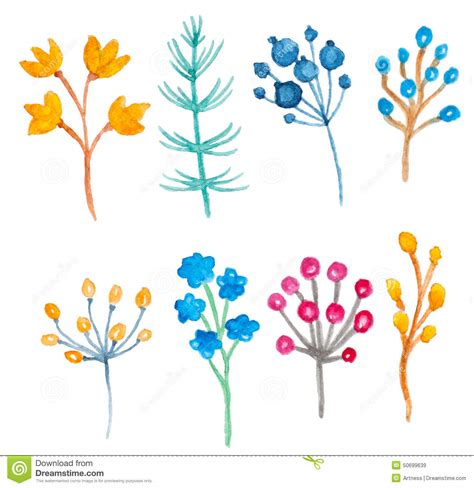 design elements watercolor watercolor floral elements stock vector image 50699639