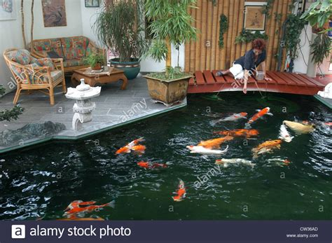indoor fish pond indoor koi pond in reigoldswil switzerland stock photo