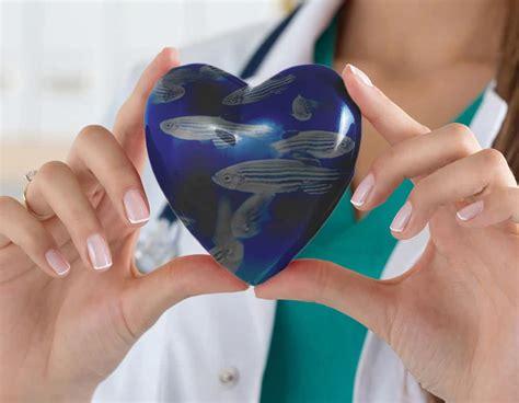alimentazione prevenzione tumori consigli per prevenire i tumori