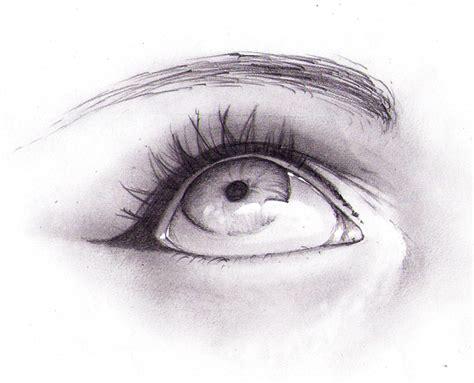 cat eye drawing cat eyes by moni158 on deviantart