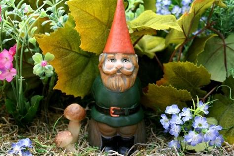 Garden Gnome Names by Garden Gnome Customized Gnome Personalized Mr For