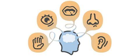 que son imagenes sensoriales el sistema nervioso en 60 segundos procesamiento de las