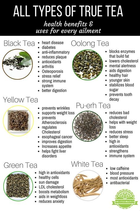 Nature S Detox Benefits by Best 25 Types Of Tea Ideas On Tea Types