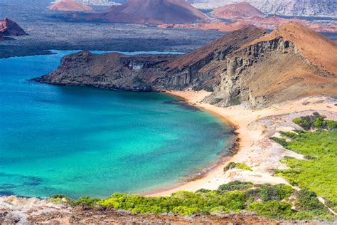 Cruise To Gal 225 Pagos Brings You Close To The Nature Silversea