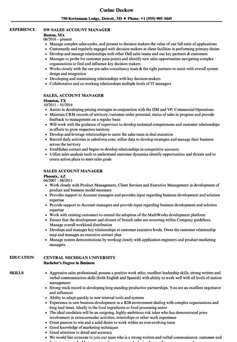 marketing account manager resume sample marketing resume the
