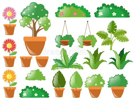 different types of trees stock vector art 635949946 istock different types of plants stock vector illustration of