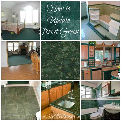 the best paint colours to update forest green