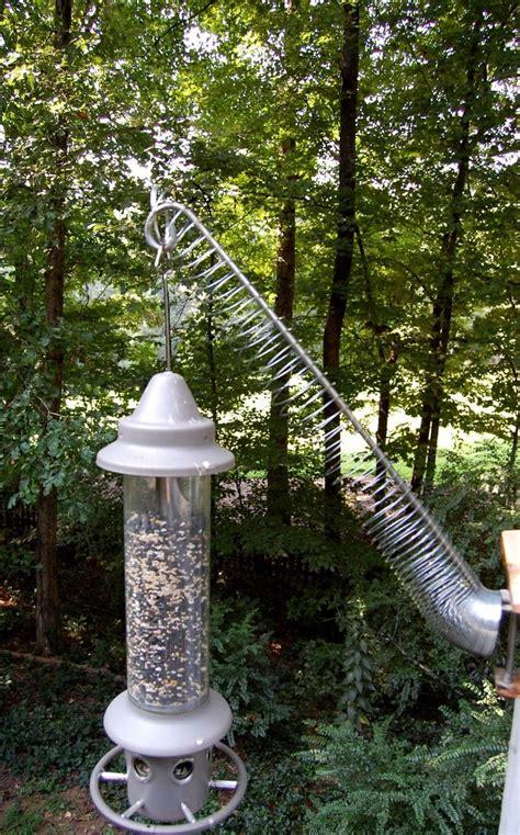 backyard bird shop 100 the backyard bird shop quilt shop cuckoo clock