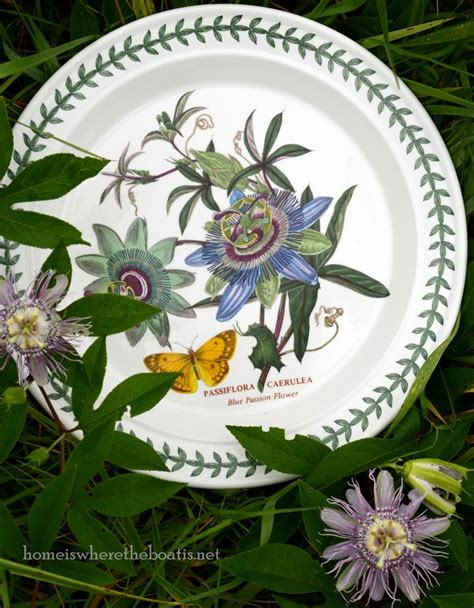 Gasing Green Bee Set 318 318 Best Images About China Portmeirion On