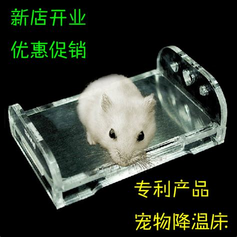 Jolly Eskimo House For Hamster zoog upscale small pet hamster cooling bed hamster cage