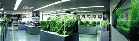aquarium design group review waarom kiezen voor ada azaqua