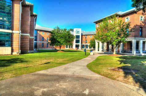 international living learning center university housing housing and residence life