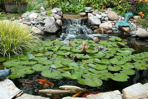 diy koi pond diy pond filter design garden pond ideas and construction tips