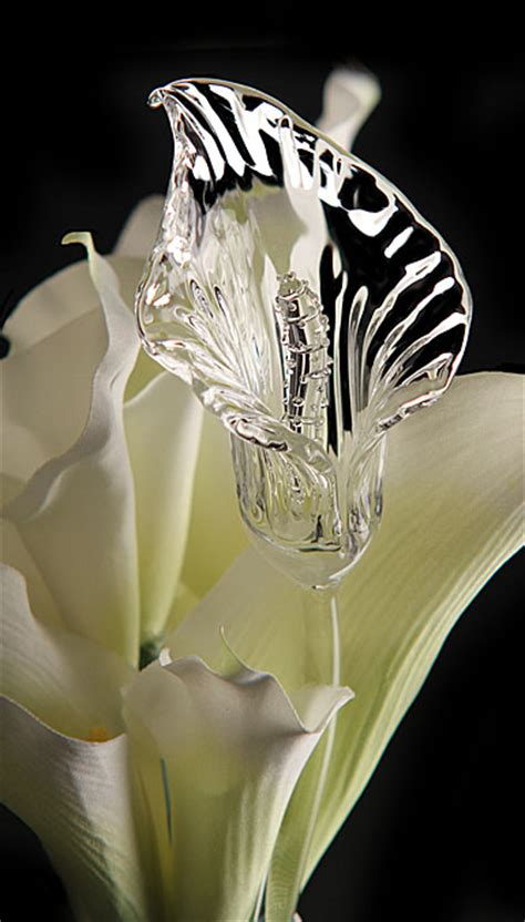 Martini Glass Vase Waterford Crystal Fleurology Calla Lily Flower