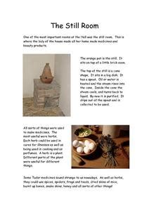 Herbs And Spices Worksheet
