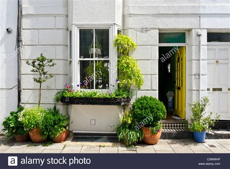 Planter Ideas For Front Of House by An Array Of Bushes And Shrubs In Pots Outside The Front A