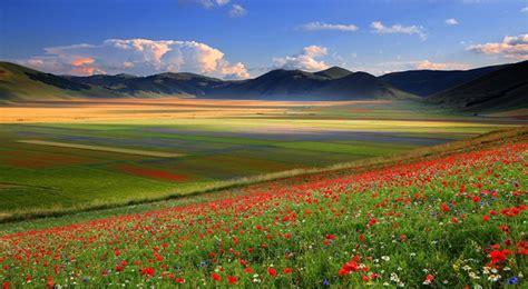 la fiorita di castelluccio la fiorita la fioritura di castelluccio di norcia dal