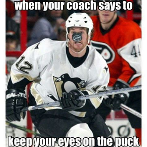 Funny Hockey Memes - 17 best ideas about hockey memes on pinterest hockey
