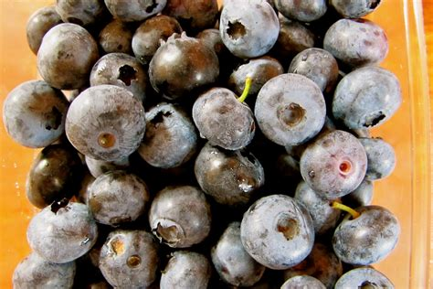 carbohydrates blueberries whole nutrition nutrition exercise carbohydrates