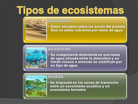 Sunflower Kitchen Canisters La Naturaleza Tipos De Ecosistemas Ecologia Tema 6 Los
