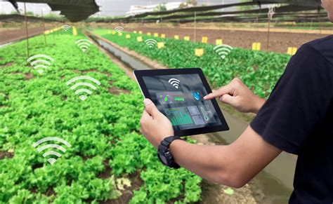 digital maps  transform indian agriculture