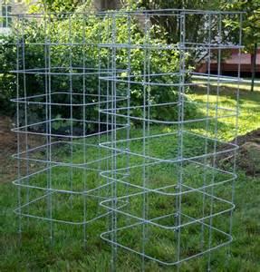 raised bed tomato trellis 1000 ideas about tomato cages on tomato
