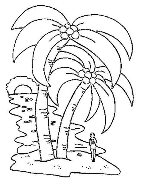 coconut coloring sheet free coloring pages art coloring pages