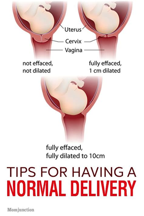normal delivery after c section tips 2466 best images about pregnancy care on pinterest