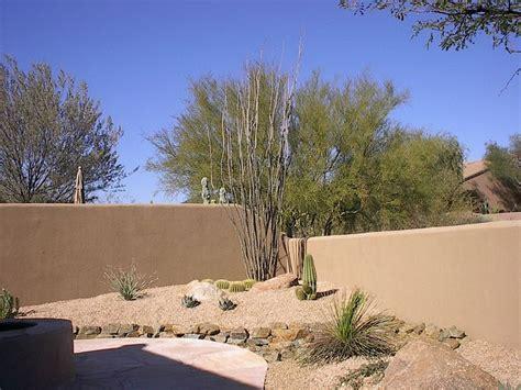desert backyards 28 best desert landscaping images on pinterest arizona