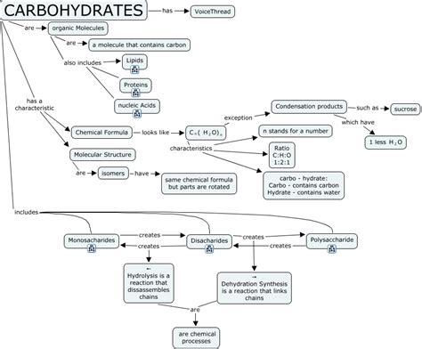 carbohydrates concept map molecular structure of carbohydrates carbohydrates hs