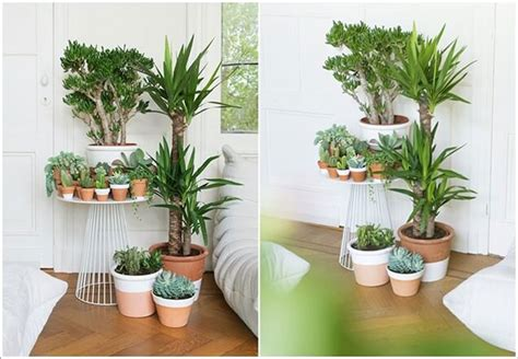 indoor plant design 15 graziose idee per arredare con le piante mondodesign it
