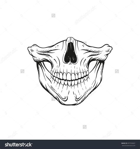 hand drawn tattoo designs skull jaw sketch design vector
